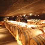 Au cœur de la fermentation