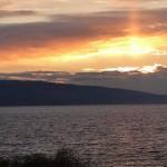 Climat et Chasselas: 88 ans d'observation