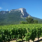 Savoie: le père fondateur endormi